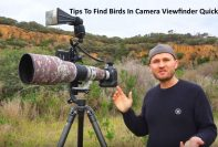 Tips To Find Bird In Camera Viewfinder Quick