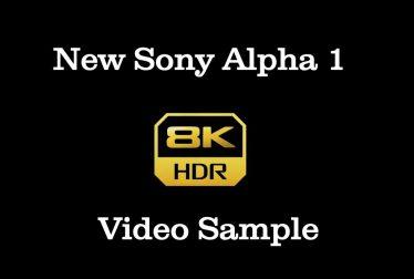 Sony a1 8K video sample
